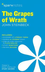 The John Steinbeck The Grapes of Wrath Essay by